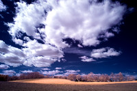 Clouds over Southborough Farm (infrared)