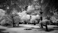 A walk in the park (infrared) - Clinton, MA